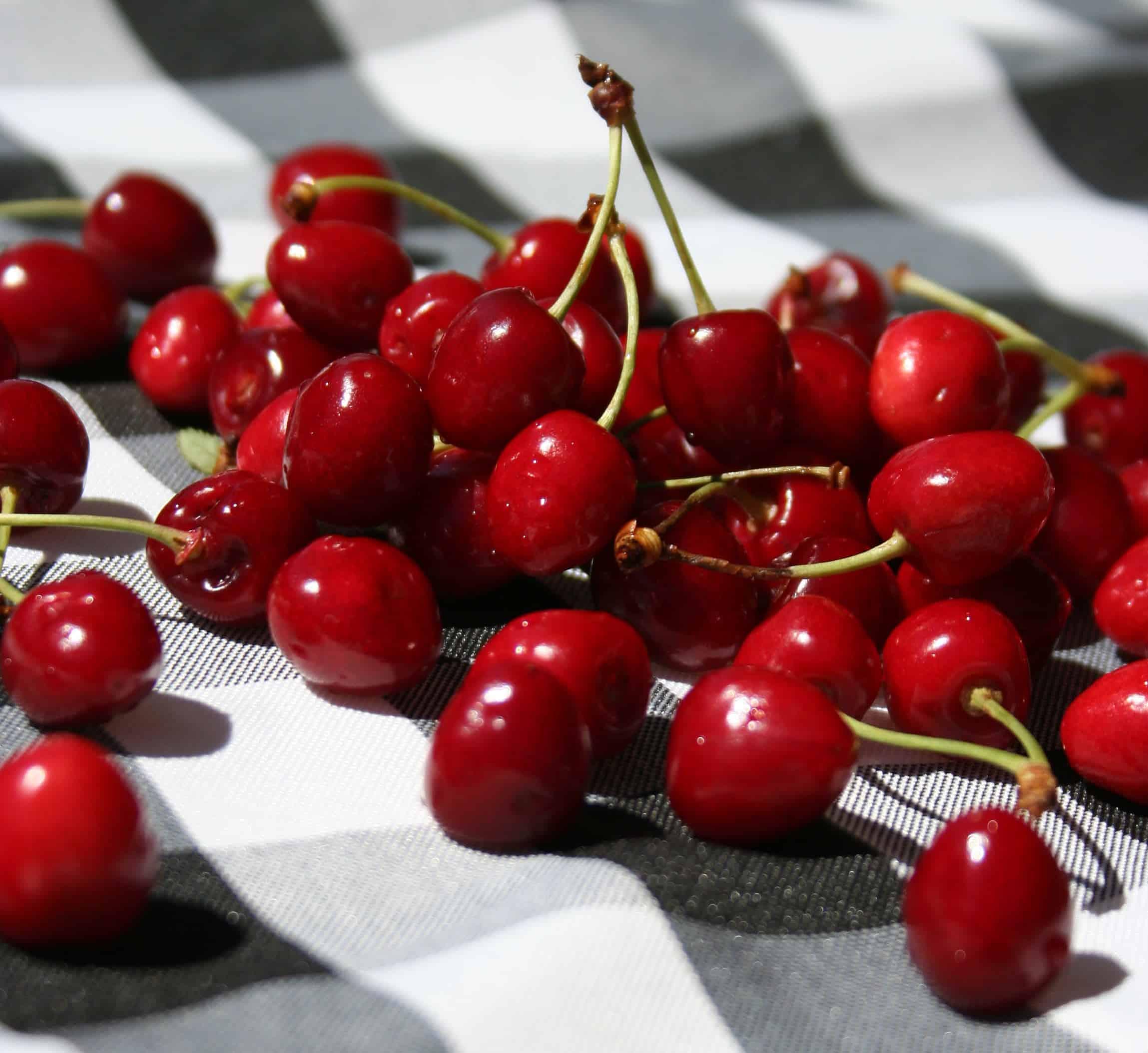 Fresh Cherry Turnovers | Savoring Today LLC