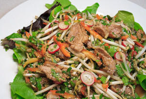 Wok-Seared Duck Salad - dinner (1 of 1)